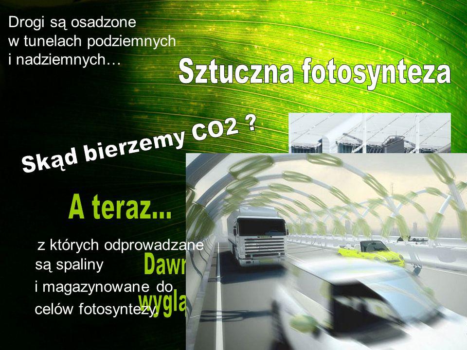 z których odprowadzane są spaliny i magazynowane do celów fotosyntezy. Drogi są osadzone w tunelach podziemnych i nadziemnych…