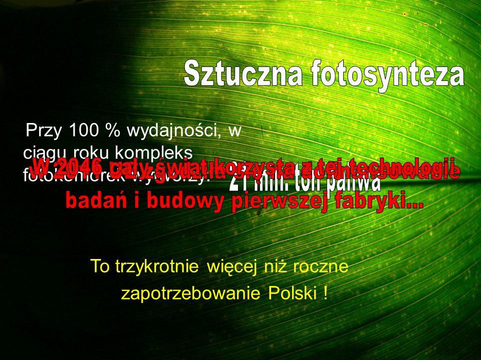 Przy 100 % wydajności, w ciągu roku kompleks fotokomórek wytworzy: To trzykrotnie więcej niż roczne zapotrzebowanie Polski !