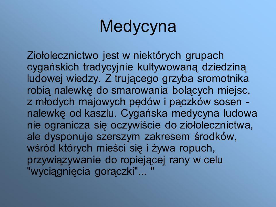 Medycyna Ziołolecznictwo jest w niektórych grupach cygańskich tradycyjnie kultywowaną dziedziną ludowej wiedzy.
