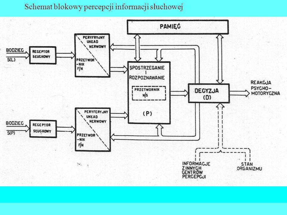 27 Schemat blokowy percepcji informacji słuchowej