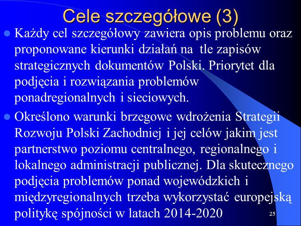 Cele szczegółowe (3) Każdy cel szczegółowy zawiera opis problemu oraz proponowane kierunki działań na tle zapisów strategicznych dokumentów Polski. Pr