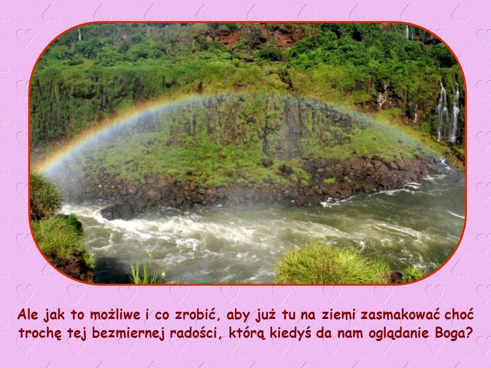 Ale jak to możliwe i co zrobić, aby już tu na ziemi zasmakować choć trochę tej bezmiernej radości, którą kiedyś da nam oglądanie Boga?