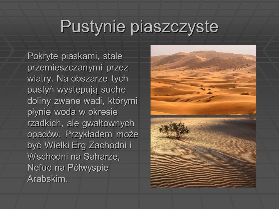 Pustynie piaszczyste Pokryte piaskami, stale przemieszczanymi przez wiatry. Na obszarze tych pustyń występują suche doliny zwane wadi, którymi płynie