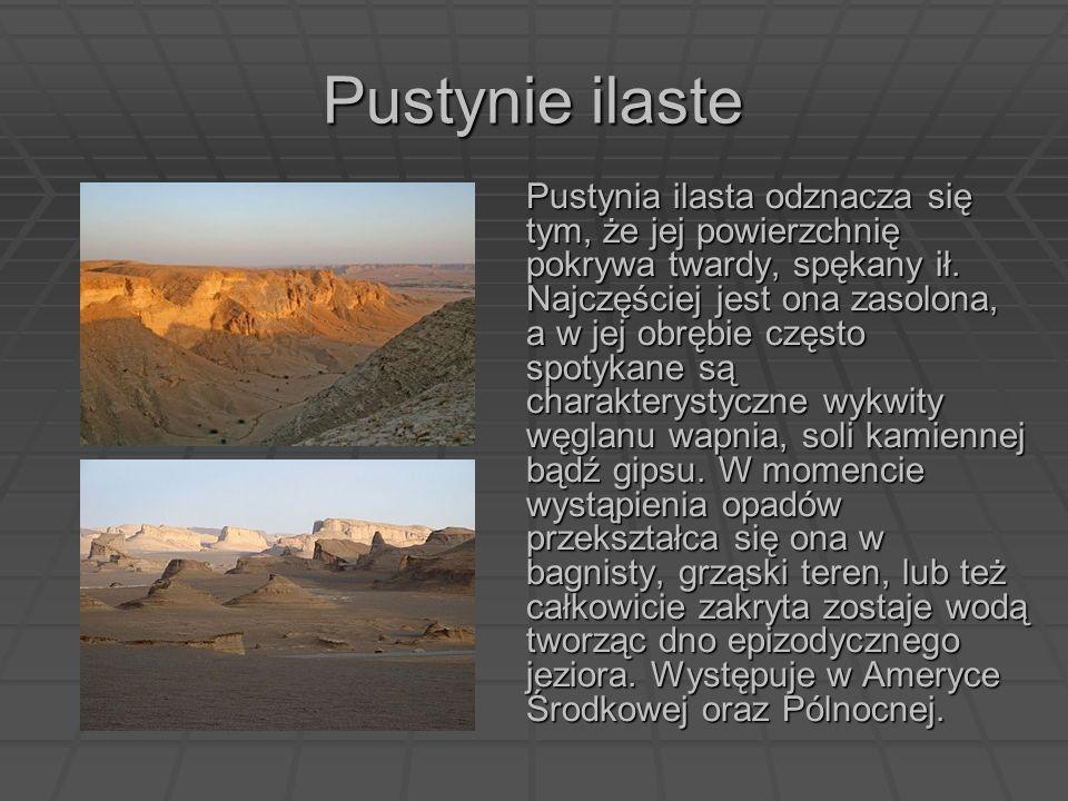 Pustynie ilaste Pustynia ilasta odznacza się tym, że jej powierzchnię pokrywa twardy, spękany ił. Najczęściej jest ona zasolona, a w jej obrębie częst