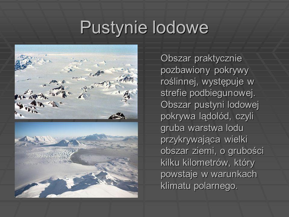 Pustynie lodowe Obszar praktycznie pozbawiony pokrywy roślinnej, występuje w strefie podbiegunowej. Obszar pustyni lodowej pokrywa lądolód, czyli grub