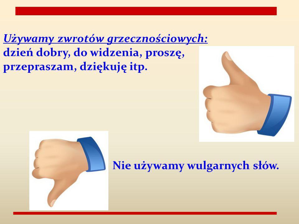 Używamy zwrotów grzecznościowych: dzień dobry, do widzenia, proszę, przepraszam, dziękuję itp. Nie używamy wulgarnych słów.
