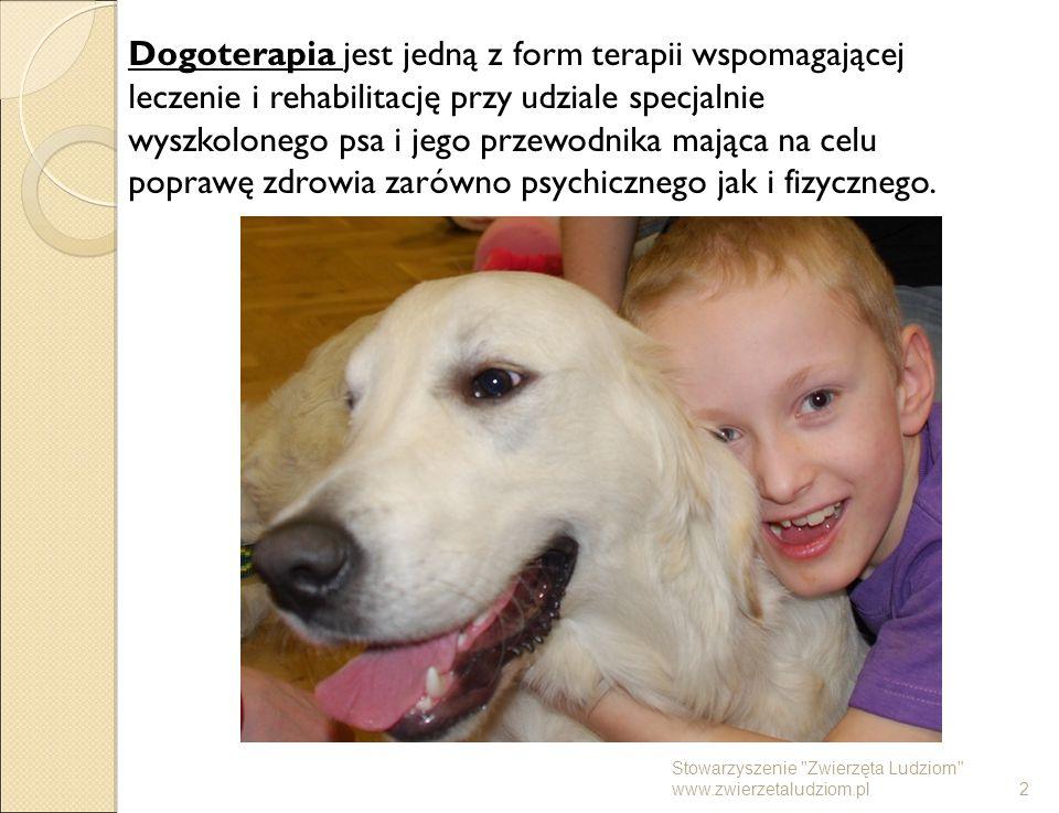 Dogoterapia jest jedną z form terapii wspomagającej leczenie i rehabilitację przy udziale specjalnie wyszkolonego psa i jego przewodnika mająca na cel
