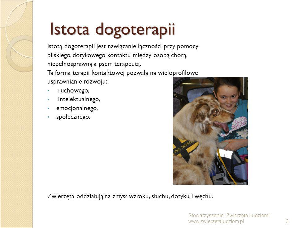 Istota dogoterapii Istotą dogoterapii jest nawiązanie łączności przy pomocy bliskiego, dotykowego kontaktu między osobą chorą, niepełnosprawną a psem