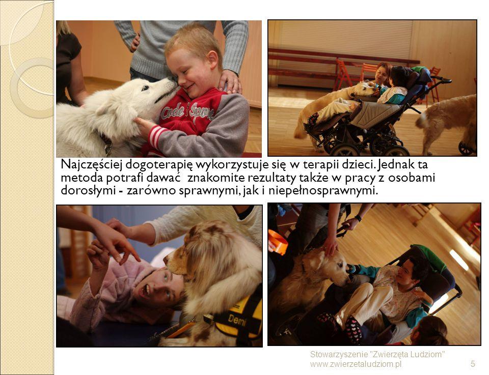 Najczęściej dogoterapię wykorzystuje się w terapii dzieci. Jednak ta metoda potrafi dawać znakomite rezultaty także w pracy z osobami dorosłymi - zaró