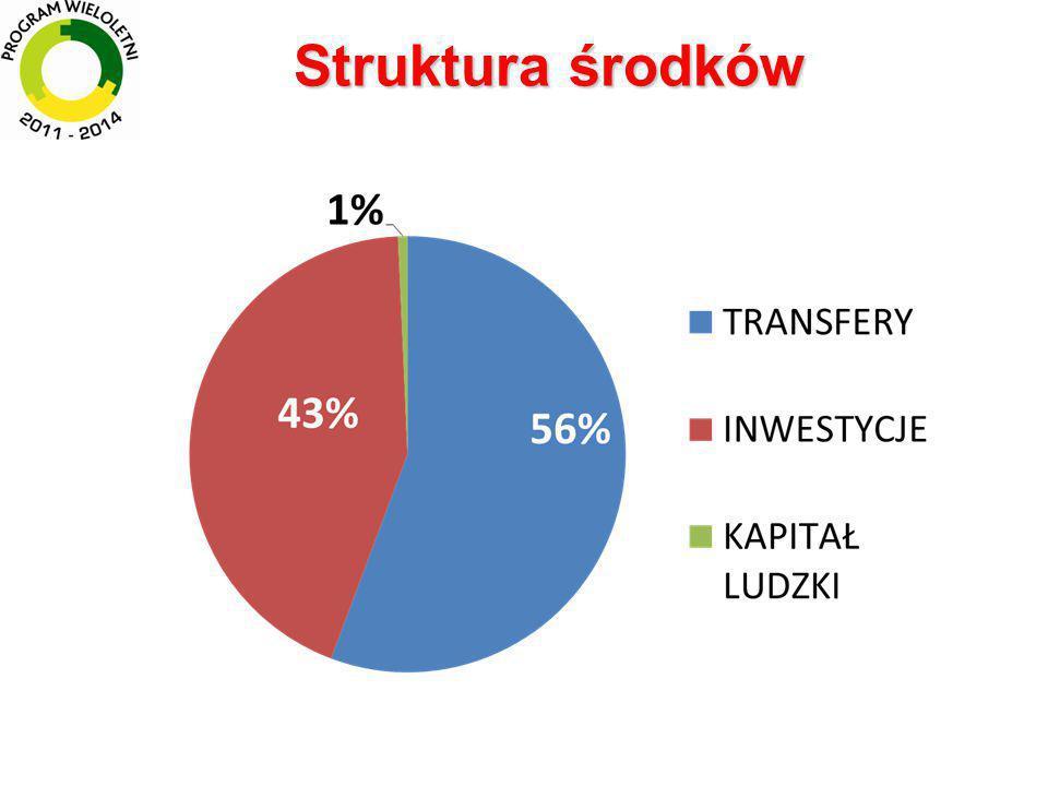 Udział środków na działania inwestycyjne w strukturze wsparcia