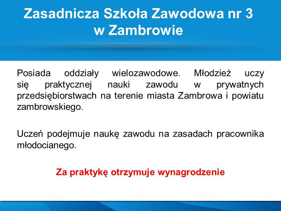 Posiada oddziały wielozawodowe. Młodzież uczy się praktycznej nauki zawodu w prywatnych przedsiębiorstwach na terenie miasta Zambrowa i powiatu zambro