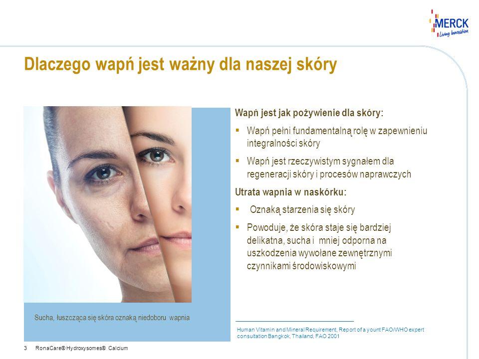 Wapń jest jak pożywienie dla skóry:  Wapń pełni fundamentalną rolę w zapewnieniu integralności skóry  Wapń jest rzeczywistym sygnałem dla regeneracj