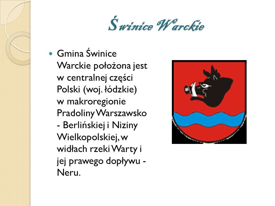 Ś winice Warckie Gmina Świnice Warckie położona jest w centralnej części Polski (woj.