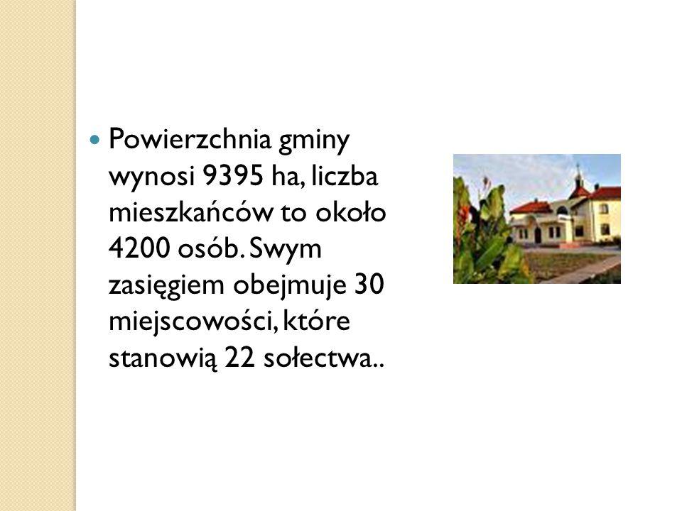 Powierzchnia gminy wynosi 9395 ha, liczba mieszkańców to około 4200 osób.