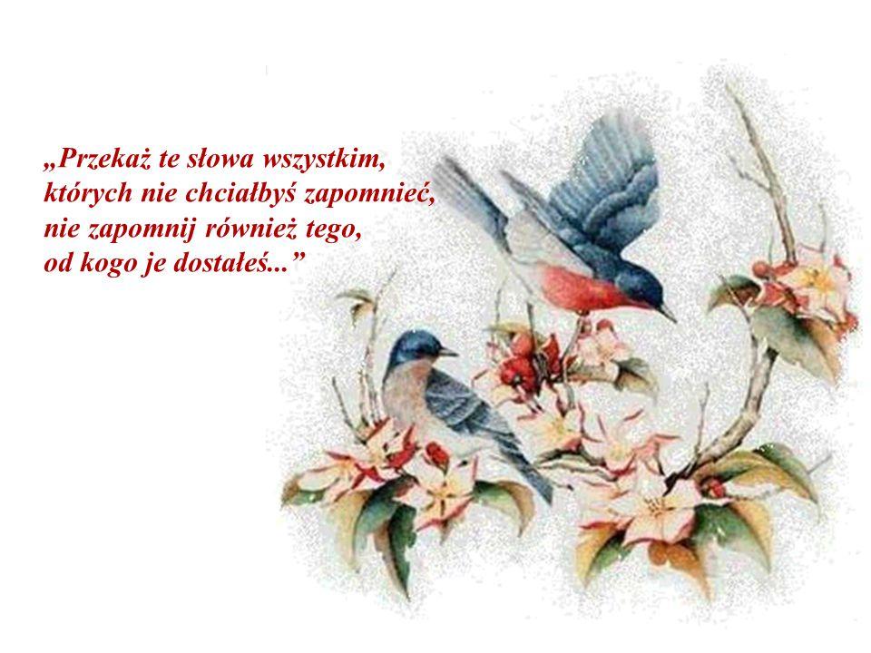 """""""Przekaż te słowa wszystkim, których nie chciałbyś zapomnieć, nie zapomnij również tego, od kogo je dostałeś..."""