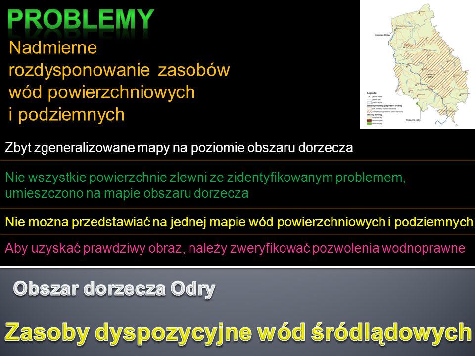 Zaśmiecenie koryt rzek i potoków Problem bez znaczenia praktycznego – zasięg występowania ograniczony do obszaru Śląska