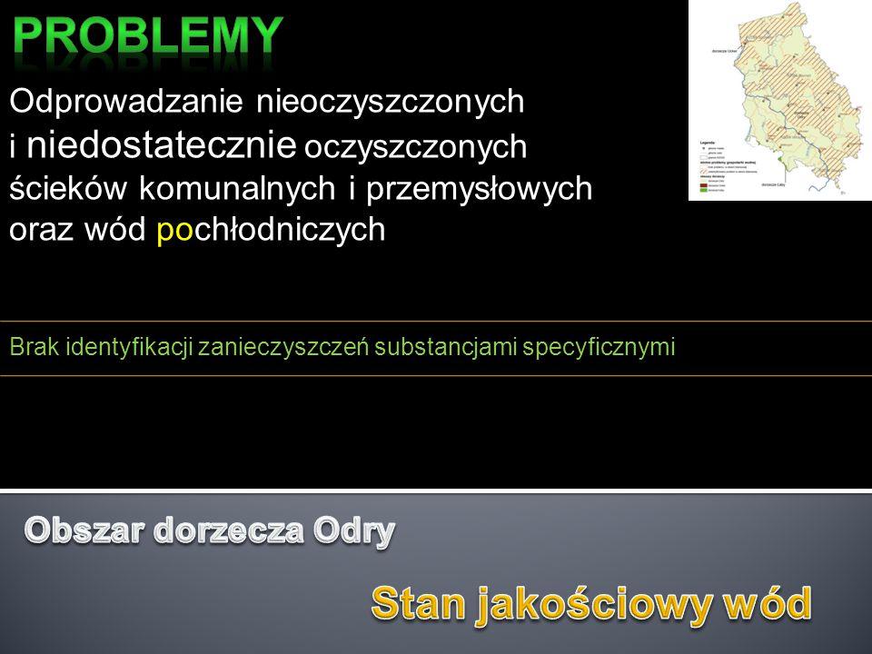 Niedostateczna sanitacja obszarów wiejskich i rekreacyjnych Brak wszystkich obszarów dla których zgłoszono identyfikację problemu (Szczecin) W programach działań przewidywać:  porozumienia międzysąsiedzkie dla małych oczyszczalni ścieków (hydrobotaniczne) z dopuszczeniem wspomagania finansowania budowy  przewidywać zmianę przepisów odnoszących się do czystości w gminie  zwiększyć kontrole odprowadzania zanieczyszczeń do gruntu