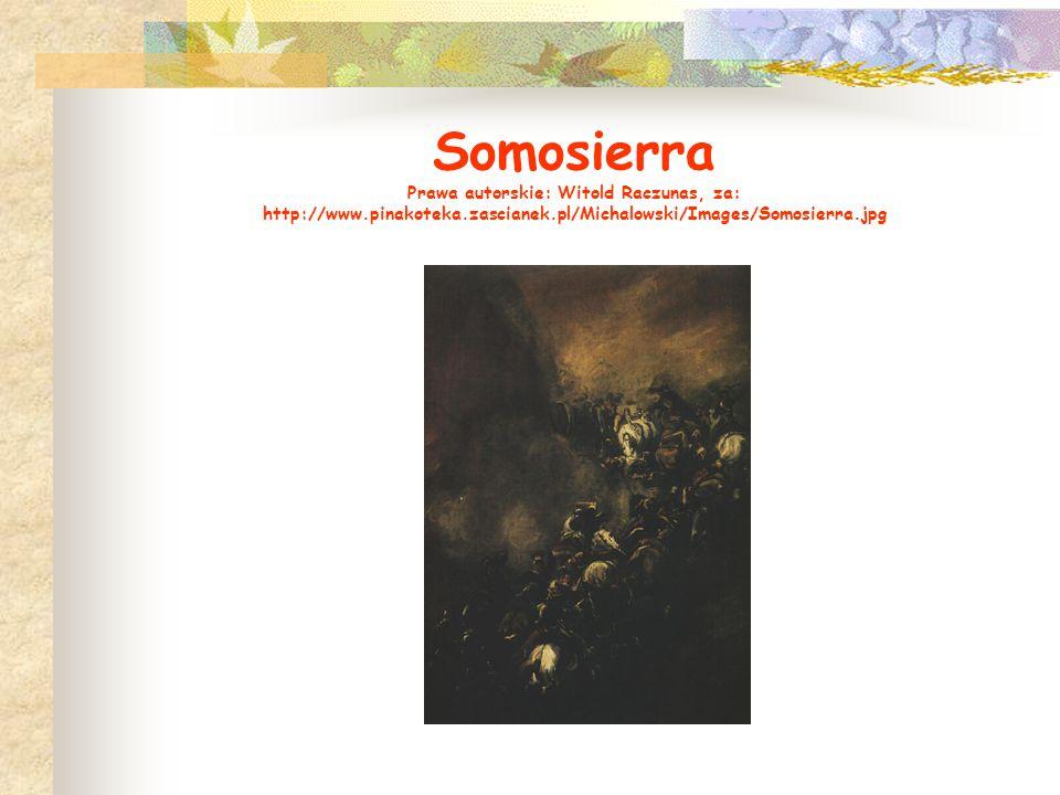 Somosierra Prawa autorskie: Witold Raczunas, za: http://www.pinakoteka.zascianek.pl/Michalowski/Images/Somosierra.jpg
