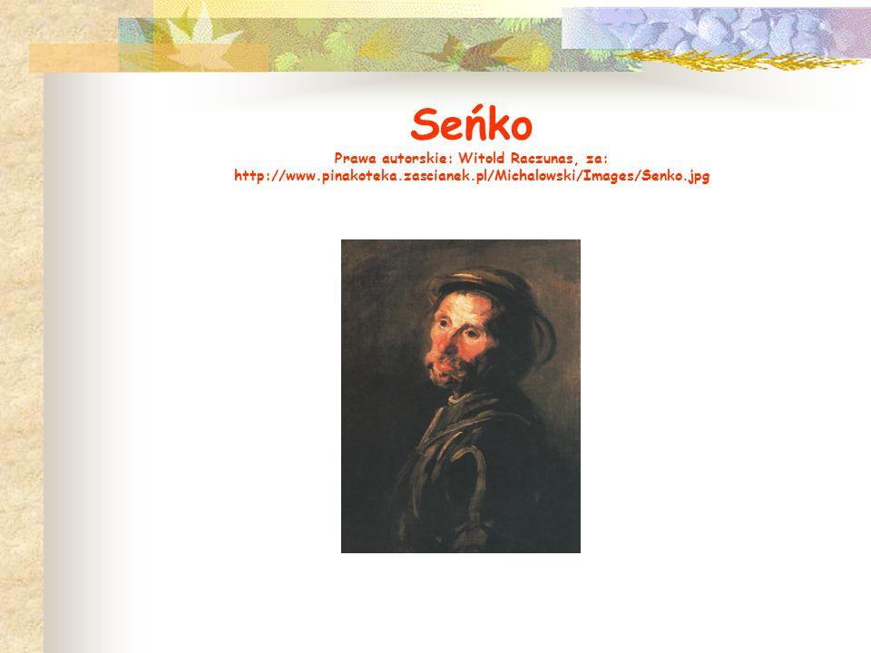 Seńko Prawa autorskie: Witold Raczunas, za: http://www.pinakoteka.zascianek.pl/Michalowski/Images/Senko.jpg