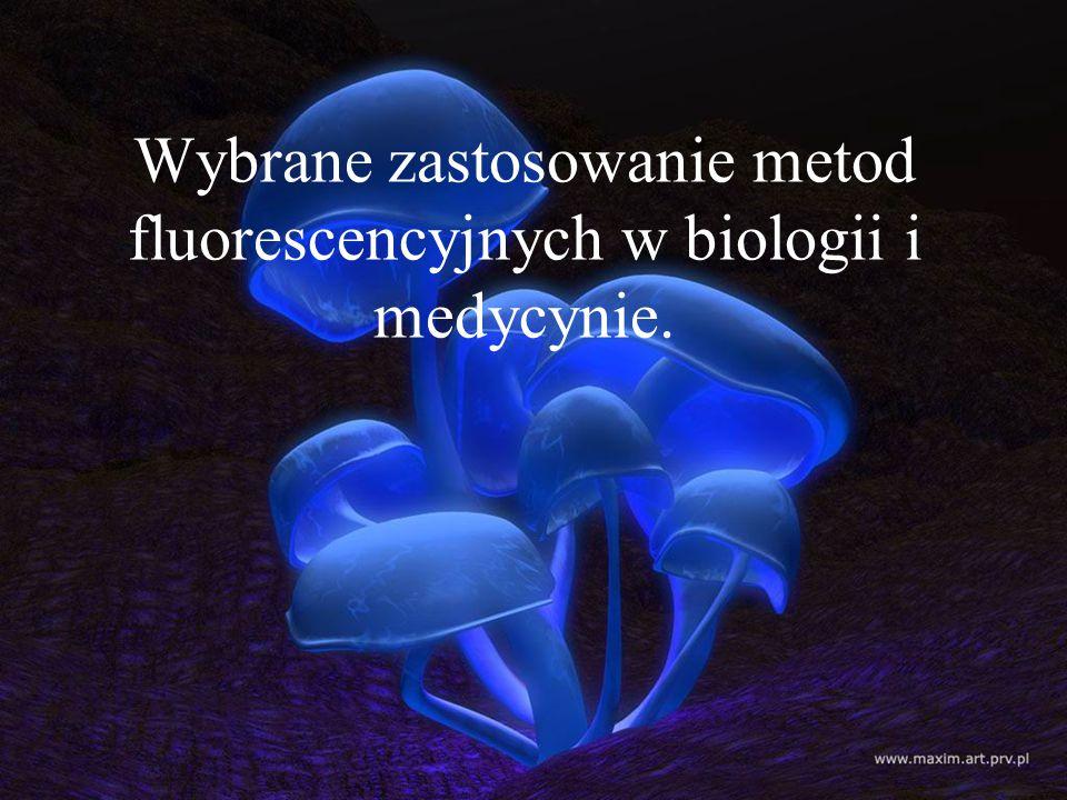 Zjawisko fotodynamiczne polega na wzbudzeniu za pomocą promieniowania świetlnego efektu świecenia komórek.