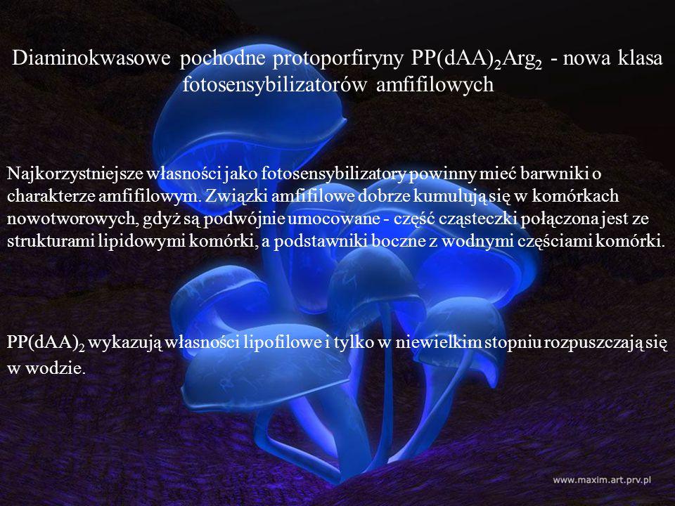 Diaminokwasowe pochodne protoporfiryny PP(dAA) 2 Arg 2 - nowa klasa fotosensybilizatorów amfifilowych Najkorzystniejsze własności jako fotosensybiliza