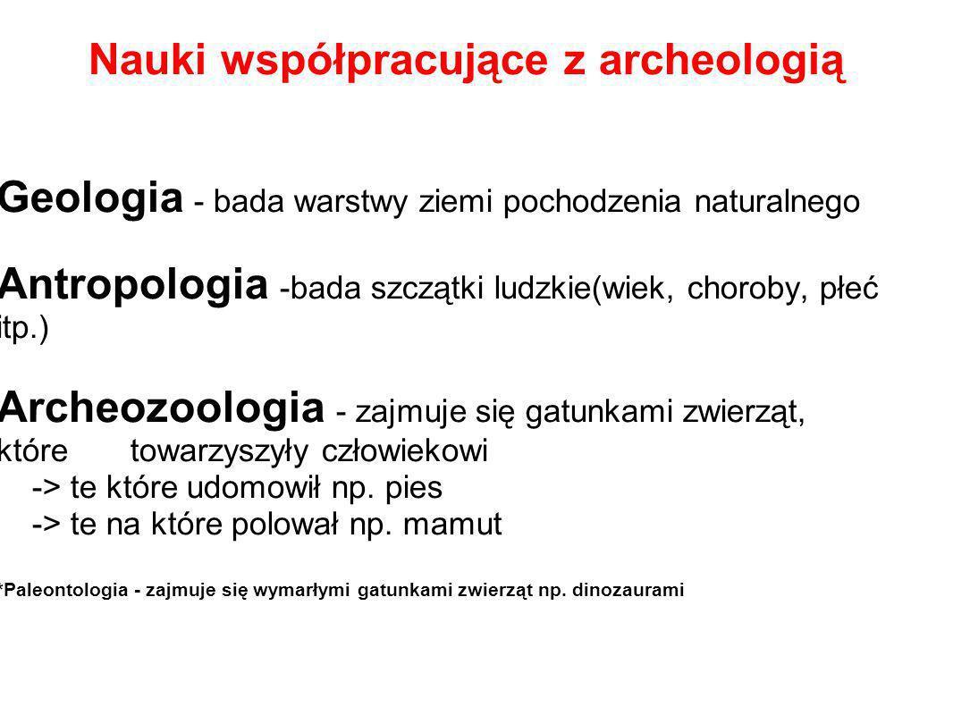 Nauki współpracujące z archeologią Geologia - bada warstwy ziemi pochodzenia naturalnego Antropologia -bada szczątki ludzkie(wiek, choroby, płeć itp.)
