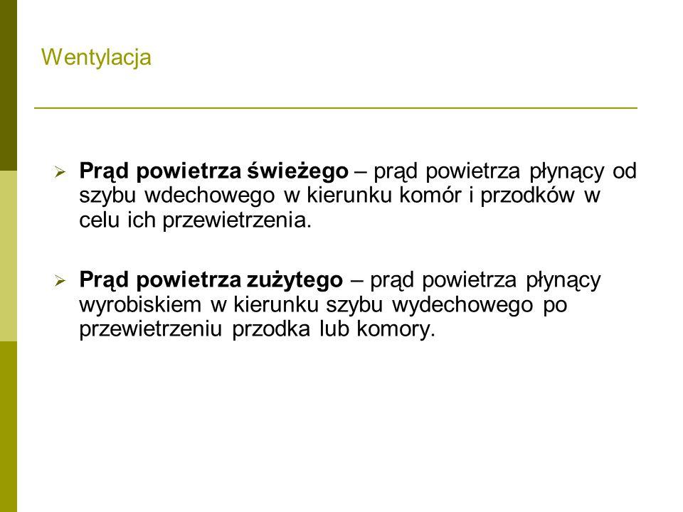 """ Występowanie metanu w Kopalni Soli """"Wieliczka . Południowa granica złoża."""
