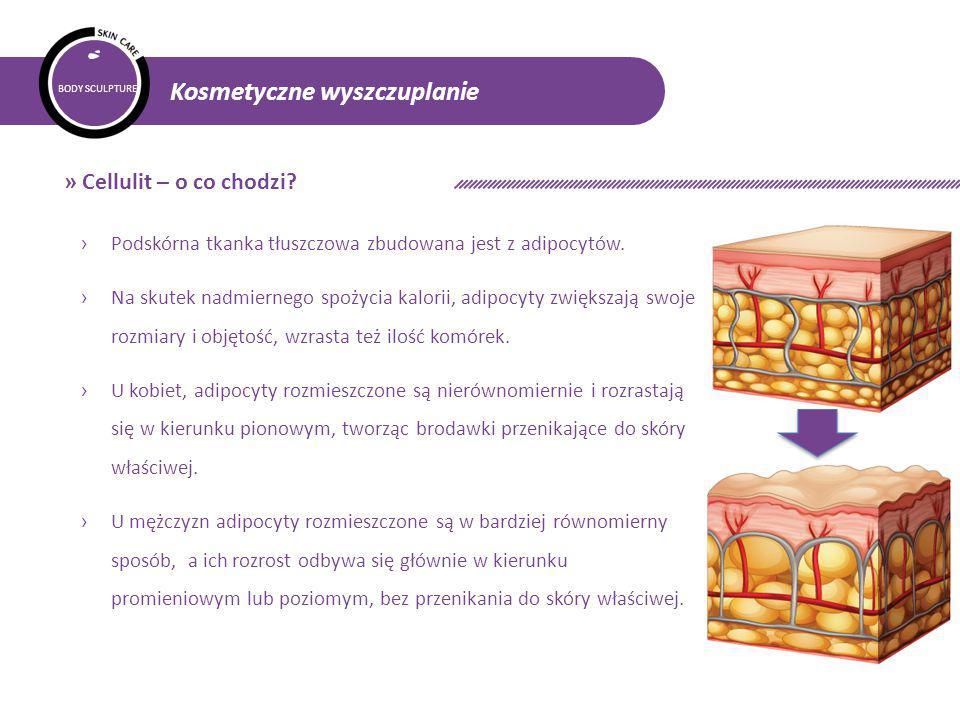 """BODY SCULPTURE Kosmetyczne wyszczuplanie › Najnowsze osiągnięcia naukowe – adipocyty brązowe, białe i beżowe › Lierac Body Slim Multi-Action Concentrate:  WTB SYSTEM 2%: nowatorski kompleks trzech substancji aktywnych (lotos, wierzba, peptyd), zdolny do przekształcania """"białych komórek tłuszczowych """"MAGAZYNUJĄCYCH w """"brązowe komórki tłuszczowe """"SPALAJĄCE TŁUSZCZ oraz do usuwania tłuszczów zawartych w """"brązowych komórkach tłuszczowych."""