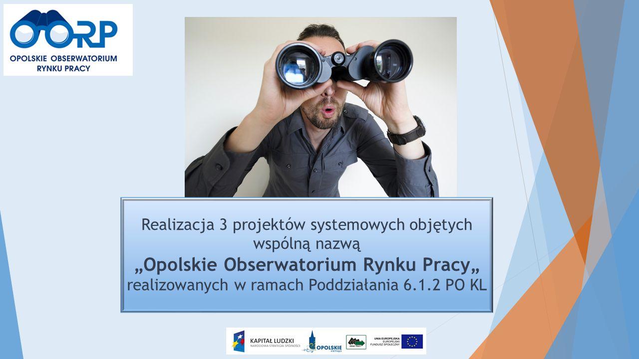 """Realizacja 3 projektów systemowych objętych wspólną nazwą """"Opolskie Obserwatorium Rynku Pracy"""" realizowanych w ramach Poddziałania 6.1.2 PO KL"""