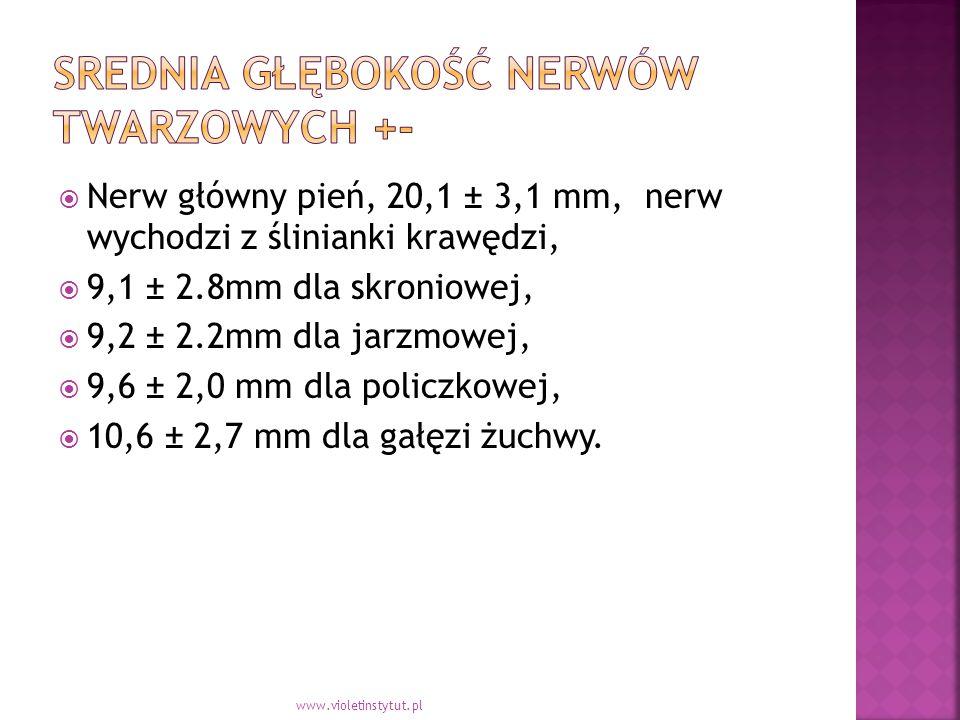  Nerw główny pień, 20,1 ± 3,1 mm, nerw wychodzi z ślinianki krawędzi,  9,1 ± 2.8mm dla skroniowej,  9,2 ± 2.2mm dla jarzmowej,  9,6 ± 2,0 mm dla policzkowej,  10,6 ± 2,7 mm dla gałęzi żuchwy.