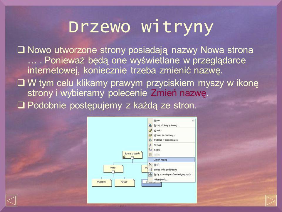Drzewo witryny  Nowo utworzone strony posiadają nazwy Nowa strona …. Ponieważ będą one wyświetlane w przeglądarce internetowej, koniecznie trzeba zmi