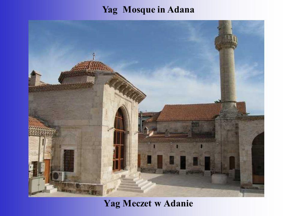 Yag Meczet w Adanie Yag Mosque in Adana