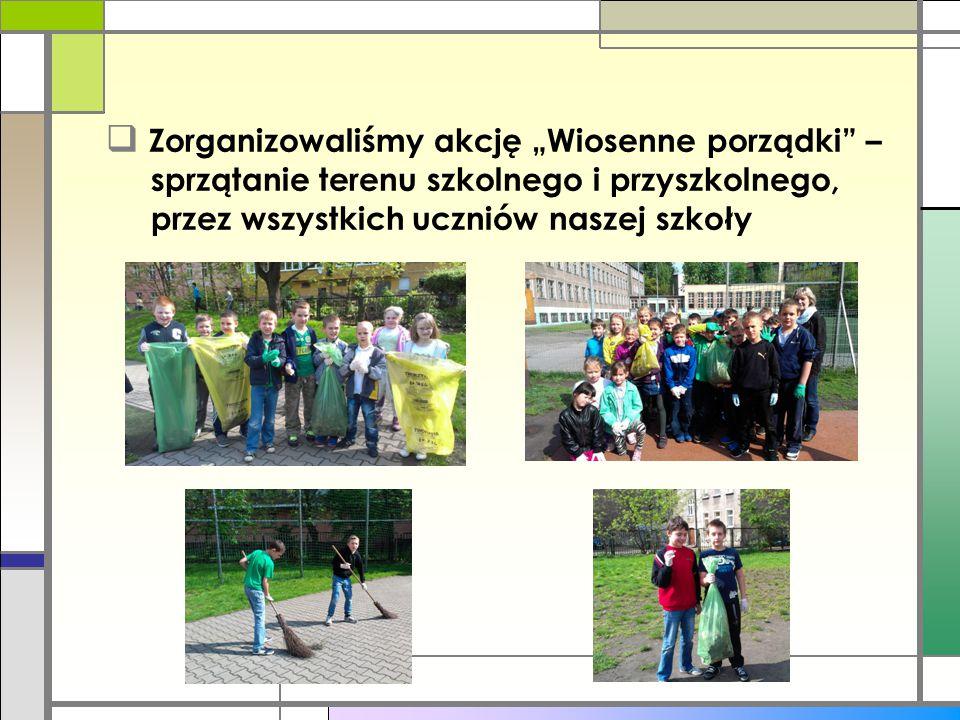 """ Zorganizowaliśmy akcję """"Wiosenne porządki"""" – sprzątanie terenu szkolnego i przyszkolnego, przez wszystkich uczniów naszej szkoły"""