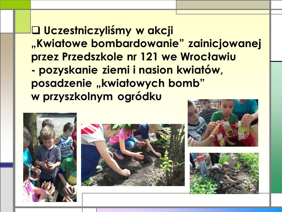 """ Uczestniczyliśmy w akcji """"Kwiatowe bombardowanie"""" zainicjowanej przez Przedszkole nr 121 we Wrocławiu - pozyskanie ziemi i nasion kwiatów, posadzeni"""