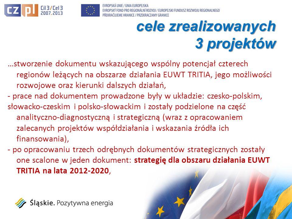 …stworzenie dokumentu wskazującego wspólny potencjał czterech regionów leżących na obszarze działania EUWT TRITIA, jego możliwości rozwojowe oraz kierunki dalszych działań, - prace nad dokumentem prowadzone były w układzie: czesko-polskim, słowacko-czeskim i polsko-słowackim i zostały podzielone na część analityczno-diagnostyczną i strategiczną (wraz z opracowaniem zalecanych projektów współdziałania i wskazania źródła ich finansowania), - po opracowaniu trzech odrębnych dokumentów strategicznych zostały one scalone w jeden dokument: strategię dla obszaru działania EUWT TRITIA na lata 2012-2020, cele zrealizowanych 3 projektów
