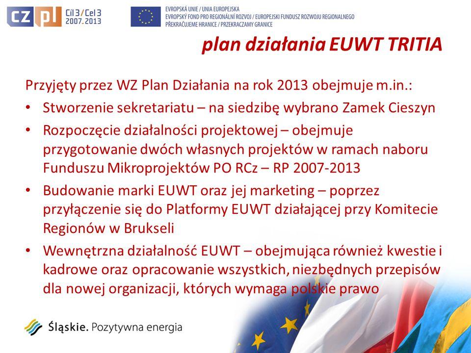 plan działania EUWT TRITIA Przyjęty przez WZ Plan Działania na rok 2013 obejmuje m.in.: Stworzenie sekretariatu – na siedzibę wybrano Zamek Cieszyn Rozpoczęcie działalności projektowej – obejmuje przygotowanie dwóch własnych projektów w ramach naboru Funduszu Mikroprojektów PO RCz – RP 2007-2013 Budowanie marki EUWT oraz jej marketing – poprzez przyłączenie się do Platformy EUWT działającej przy Komitecie Regionów w Brukseli Wewnętrzna działalność EUWT – obejmująca również kwestie i kadrowe oraz opracowanie wszystkich, niezbędnych przepisów dla nowej organizacji, których wymaga polskie prawo