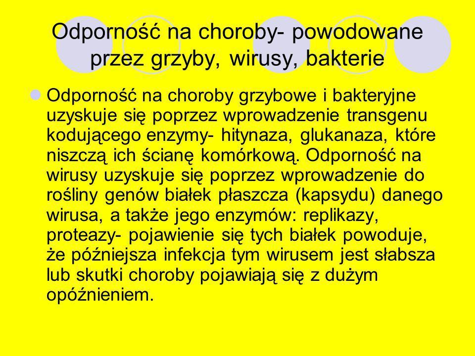 Odporność na herbicydy Herbicydy- chemiczne środki ochrony roślin, środki chwastobójcze. Najpowszechniejsze modyfikacje roślin; nadanie odporności na
