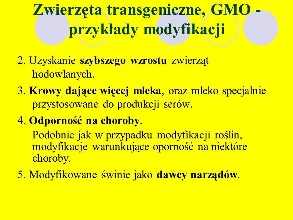 Zwierzęta transgeniczne, GMO - przykłady modyfikacji 1. Modyfikacje mające na celu wytwarzanie w organizmie zwierząt genetycznie zmienionych białek wy
