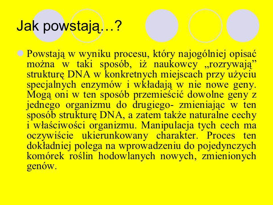 """Co to jest…? """"Rośliny transgeniczne"""" to rośliny zawierające w swych komórkach włączony do chromosomu gen obcego organizmu. Organizmy te otrzymuje się"""