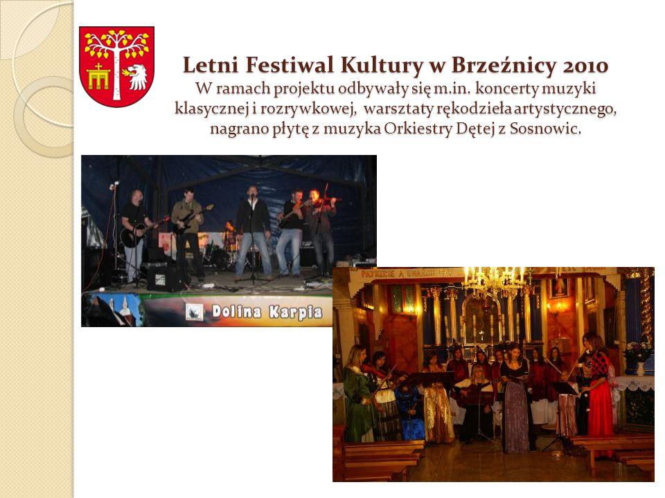 Letni Festiwal Kultury w Brzeźnicy 2010 W ramach projektu odbywały się m.in.