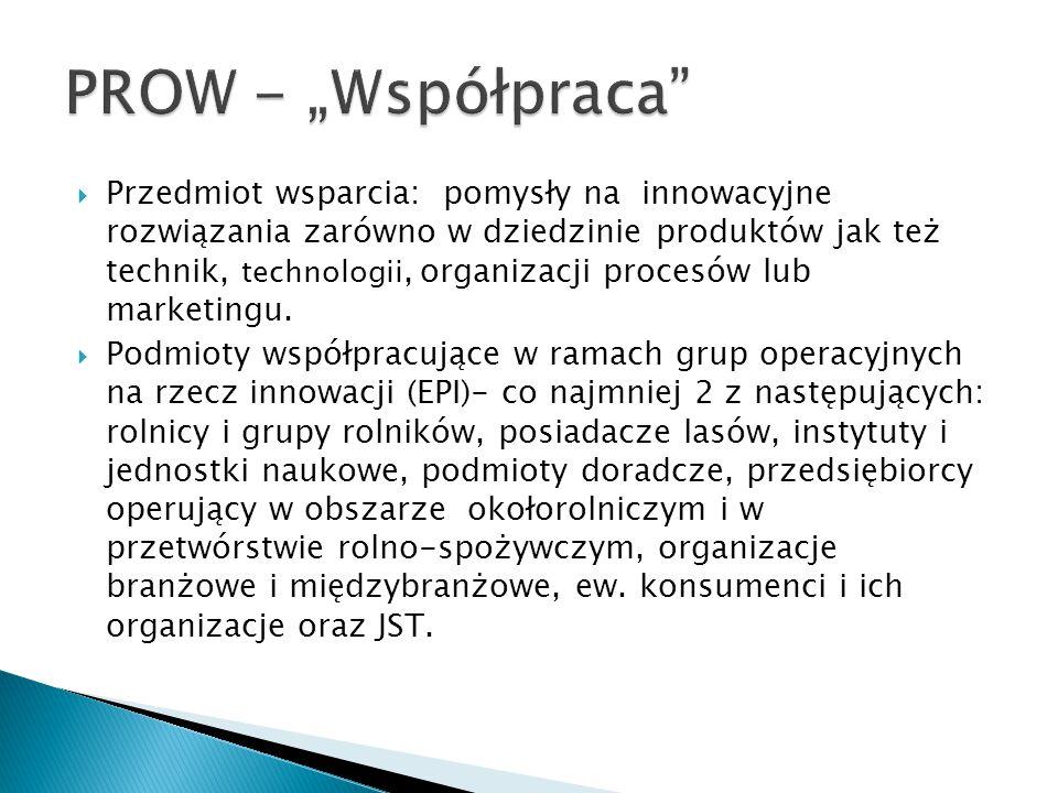  Przedmiot wsparcia: pomysły na innowacyjne rozwiązania zarówno w dziedzinie produktów jak też technik, technologii, organizacji procesów lub marketi