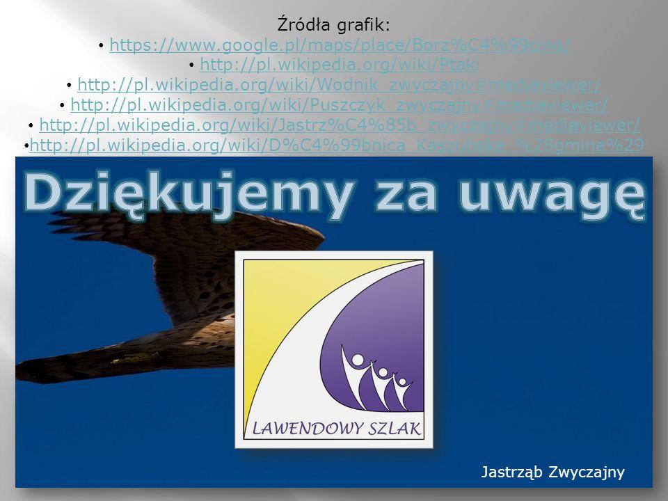 Źródła grafik: https://www.google.pl/maps/place/Borz%C4%99cino/ http://pl.wikipedia.org/wiki/Ptaki http://pl.wikipedia.org/wiki/Wodnik_zwyczajny#mediaviewer/ http://pl.wikipedia.org/wiki/Puszczyk_zwyczajny#mediaviewer/ http://pl.wikipedia.org/wiki/Jastrz%C4%85b_zwyczajny#mediaviewer/ http://pl.wikipedia.org/wiki/D%C4%99bnica_Kaszubska_%28gmina%29 Jastrząb Zwyczajny