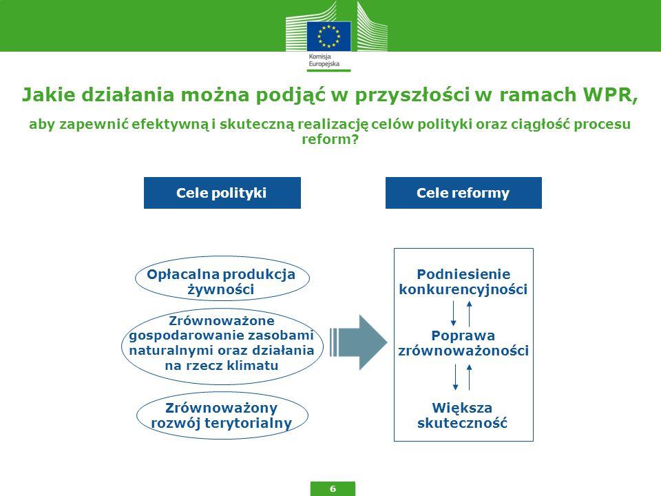 6 aby zapewnić efektywną i skuteczną realizację celów polityki oraz ciągłość procesu reform.