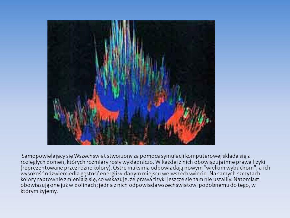 Samopowielający się Wszechświat stworzony za pomocą symulacji komputerowej składa się z rozległych domen, których rozmiary rosły wykładniczo. W każdej