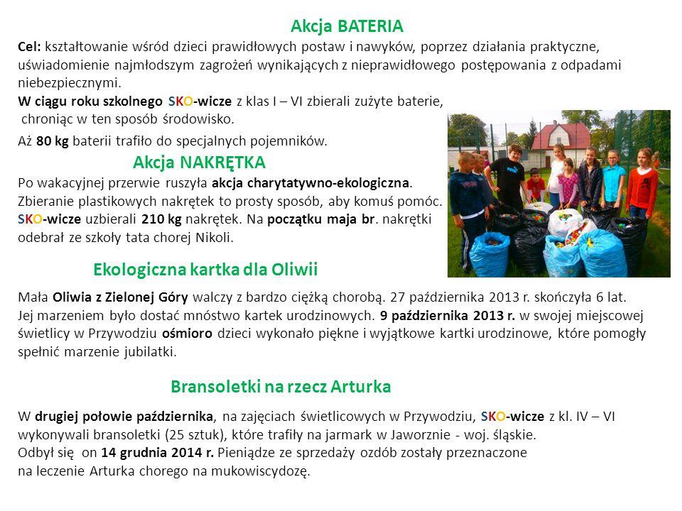 Akcja BATERIA Cel: kształtowanie wśród dzieci prawidłowych postaw i nawyków, poprzez działania praktyczne, uświadomienie najmłodszym zagrożeń wynikają