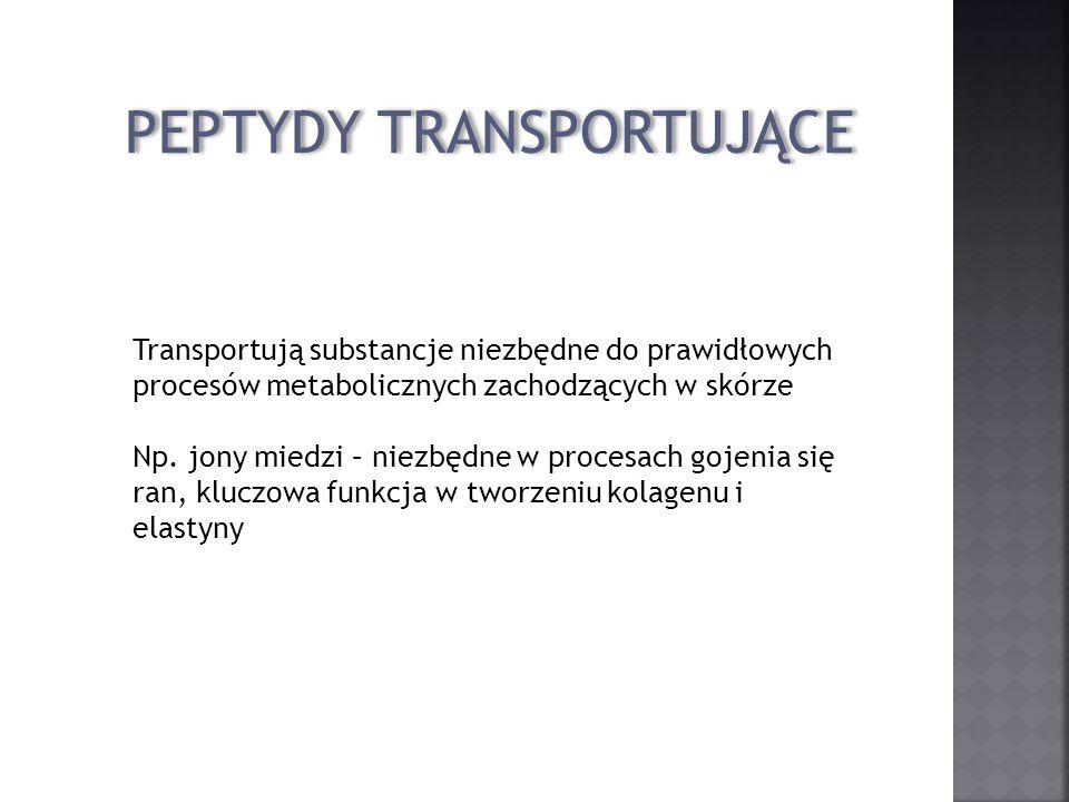 PEPTYDY TRANSPORTUJĄCE Transportują substancje niezbędne do prawidłowych procesów metabolicznych zachodzących w skórze Np. jony miedzi – niezbędne w p