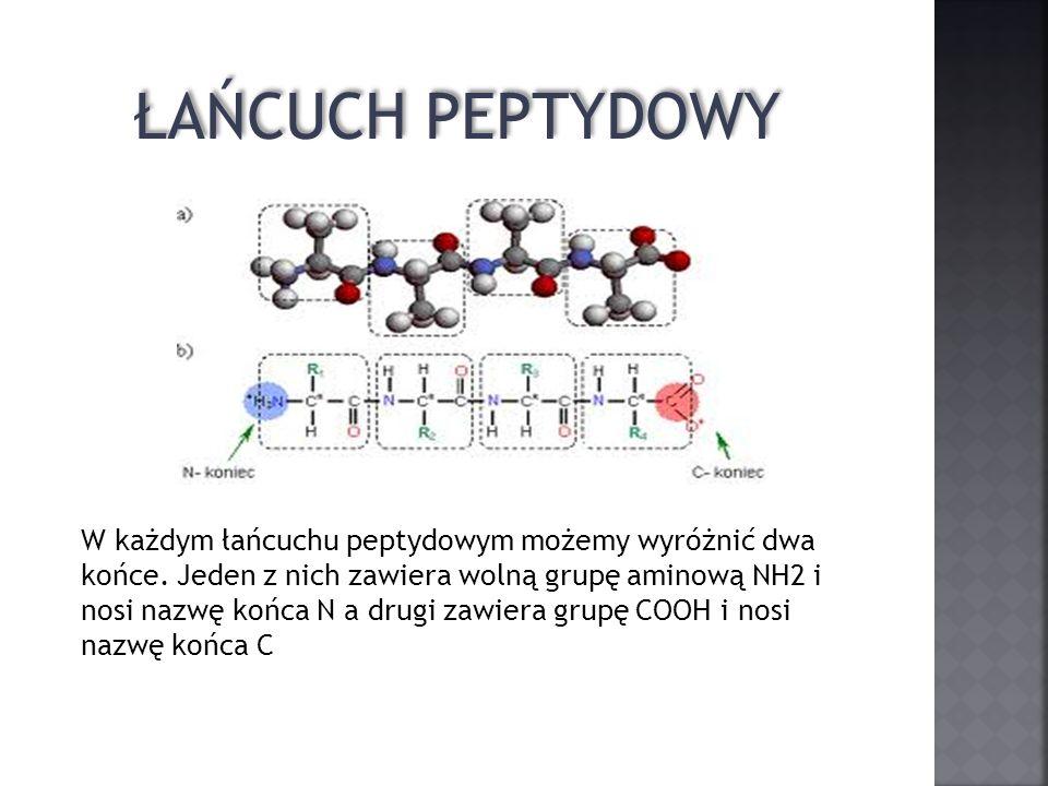 ŁAŃCUCH PEPTYDOWY W każdym łańcuchu peptydowym możemy wyróżnić dwa końce. Jeden z nich zawiera wolną grupę aminową NH2 i nosi nazwę końca N a drugi za