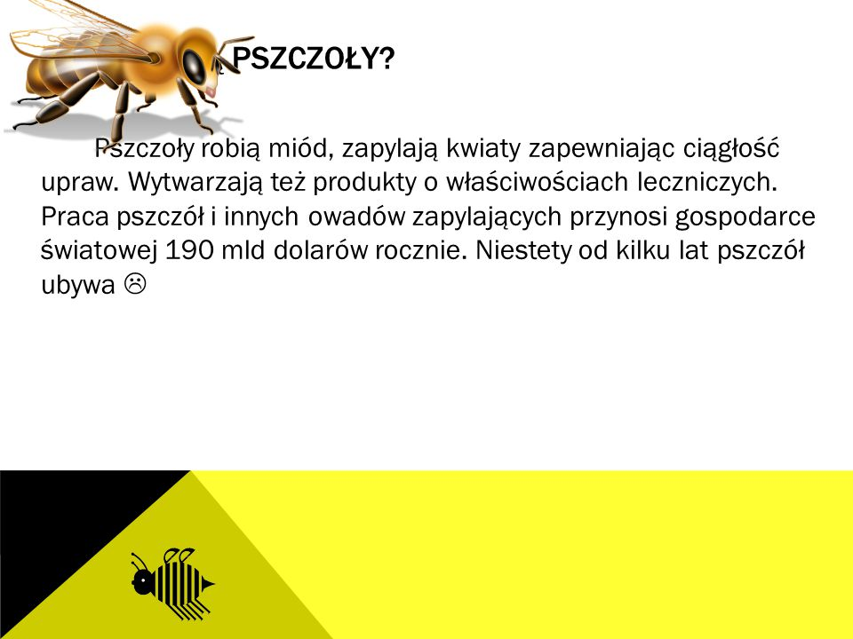 PO CO SĄ PSZCZOŁY? Pszczoły robią miód, zapylają kwiaty zapewniając ciągłość upraw. Wytwarzają też produkty o właściwościach leczniczych. Praca pszczó