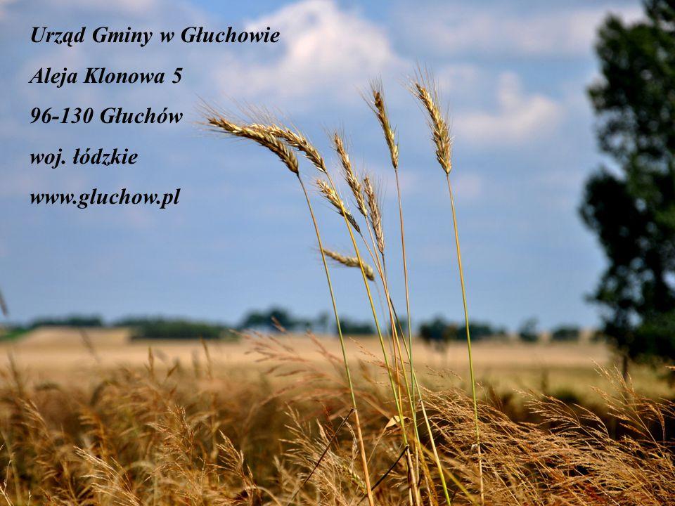 Urząd Gminy w Głuchowie Aleja Klonowa 5 96-130 Głuchów woj. łódzkie www.gluchow.pl