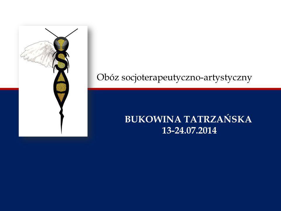 Obóz socjoterapeutyczno-artystyczny BUKOWINA TATRZAŃSKA 13-24.07.2014